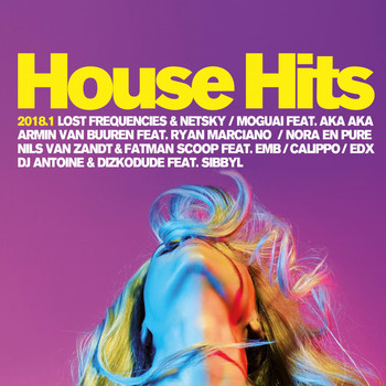 Various Artists - House Hits 2018.1