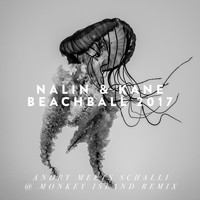 Nalin & Kane - Beachball (Andry Meets Schalli @ Monkey Island Remix)