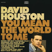 David Houston - You Mean the World to Me