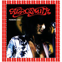 Aerosmith - Foxboro Stadium, Mass. September 6th, 1993