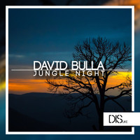 David Bulla - Jungle Night
