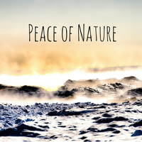 Nature Sounds - Peace of Nature