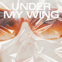Young Galaxy - Under My Wing