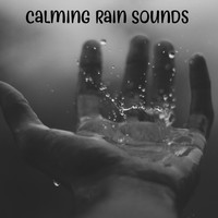 Rain Sounds, Meditation Music Zone, Nature Sounds Nature Music - 2017 Calming Rain Sounds to Aid Sleep and Relieve Anxiety