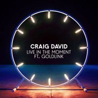 Craig David feat. Goldlink - Live in the Moment