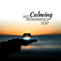 Restaurant Music - Calming Jazz Instrumentals 2017
