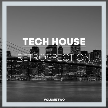 Various Artists - Tech House Retrospection, Vol. 2