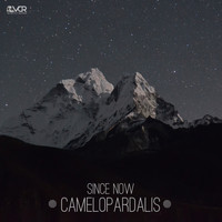 Since Now - Camelopardalis