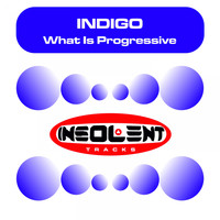 Indigo - What Is Progressive