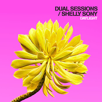 Dual Sessions - Daylight