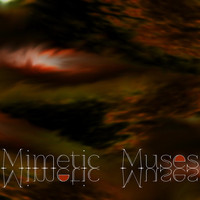 The Dance Initiative - Mimetic Muses