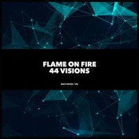 Flame On Fire - 44 Visions