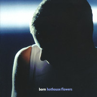 Hothouse Flowers - Born