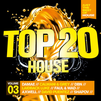 Various Artists - Top 20 House, Vol. 3