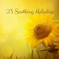 Nature Sounds - 23 Soothing Melodies