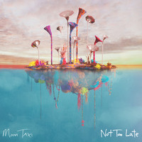 Moon Taxi - Not Too Late