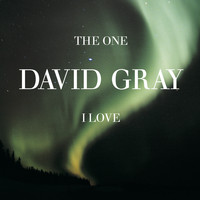 David Gray - The One I Love, Pt. 2