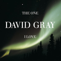 David Gray - The One I Love, Pt. 1