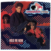 Thompson Twins - Hold Me Now (Metro Boomin Mix)