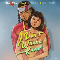 Ce'Cile - I Don't Wanna Know (feat. Ce'Cile & Kalash)