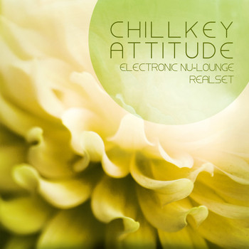 Various Artists - Chillkey Attitude (Electronic Nu-Lounge Realset Rebuild)