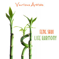 Various Artists - Feng Shui (Life Harmony)