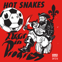 Hot Snakes - Audit in Progress (Explicit)