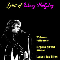 Johnny Hallyday - Spirit of Johnny Hallyday