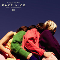 The Aces - Fake Nice