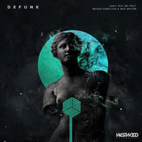 Defunk - Can't Buy Me feat. Megan Hamilton & Wes Writer