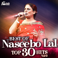 Naseebo Lal - Best Of Naseebo Lal Top 30 Hits, Vol. 2