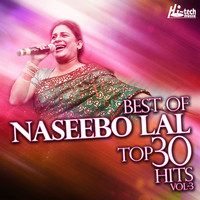 Naseebo Lal - Best Of Naseebo Lal Top 30 Hits, Vol. 3