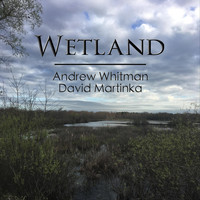 David Martinka & Andrew Whitman - Wetland