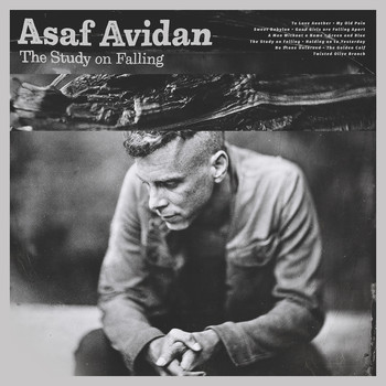 Asaf Avidan - The Study On Falling (Deluxe)