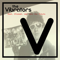 The Vibrators - Past, Present and into the Future