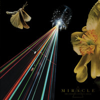 Miracle - Light Mind - Single