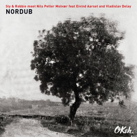 Sly & Robbie + Nils Petter Molvaer + Eivind Aarset + Vladislav Delay - If I Gave You My Love
