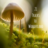 Yoga Sounds - 21 Tracks to Wonderland