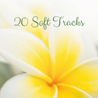 Nature Sounds - 20 Soft Tracks