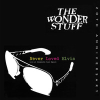 The Wonder Stuff - Never Loved Elvis (Live)