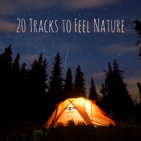Nature Sounds - 20 Tracks to Feel Nature