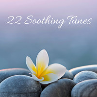 Nature Sounds - 22 Soothing Songs