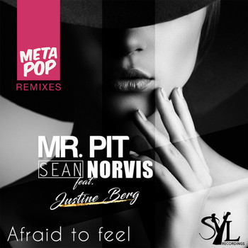 Mr. Pit - Afraid to feel: MetaPop Remixes