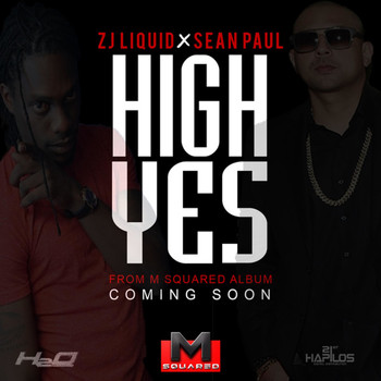 Sean Paul - High Yes - Single