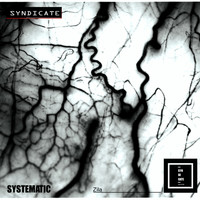 Systematic - Zila