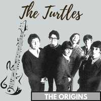 The Turtles - The Origins