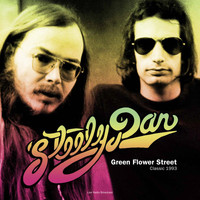 Steely Dan - Green Flower Street (Live)
