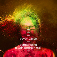 Steven Wilson - Permanating (Ewan Pearson Mix)