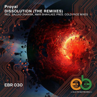 Proyal - Dissolution (The Remixes)