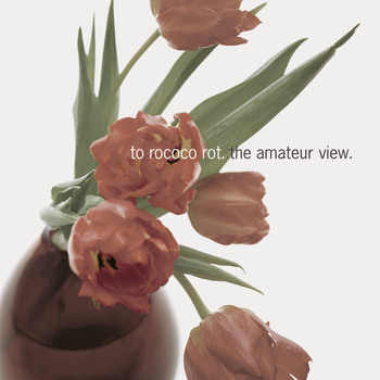 To Rococo Rot - The Amateur View